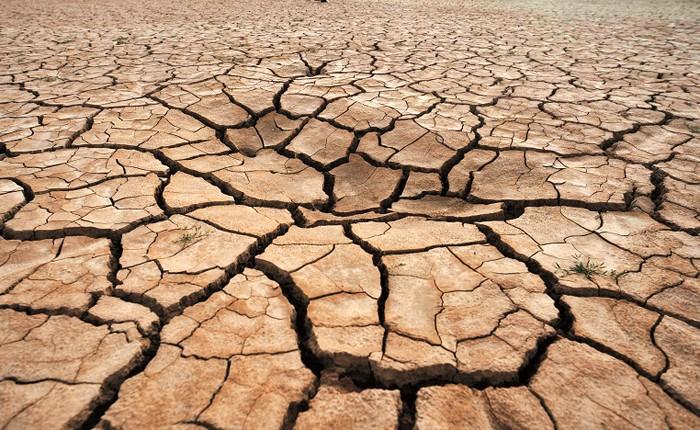 El Día contra la Desertificación advierte sobre desgaste de la tierra