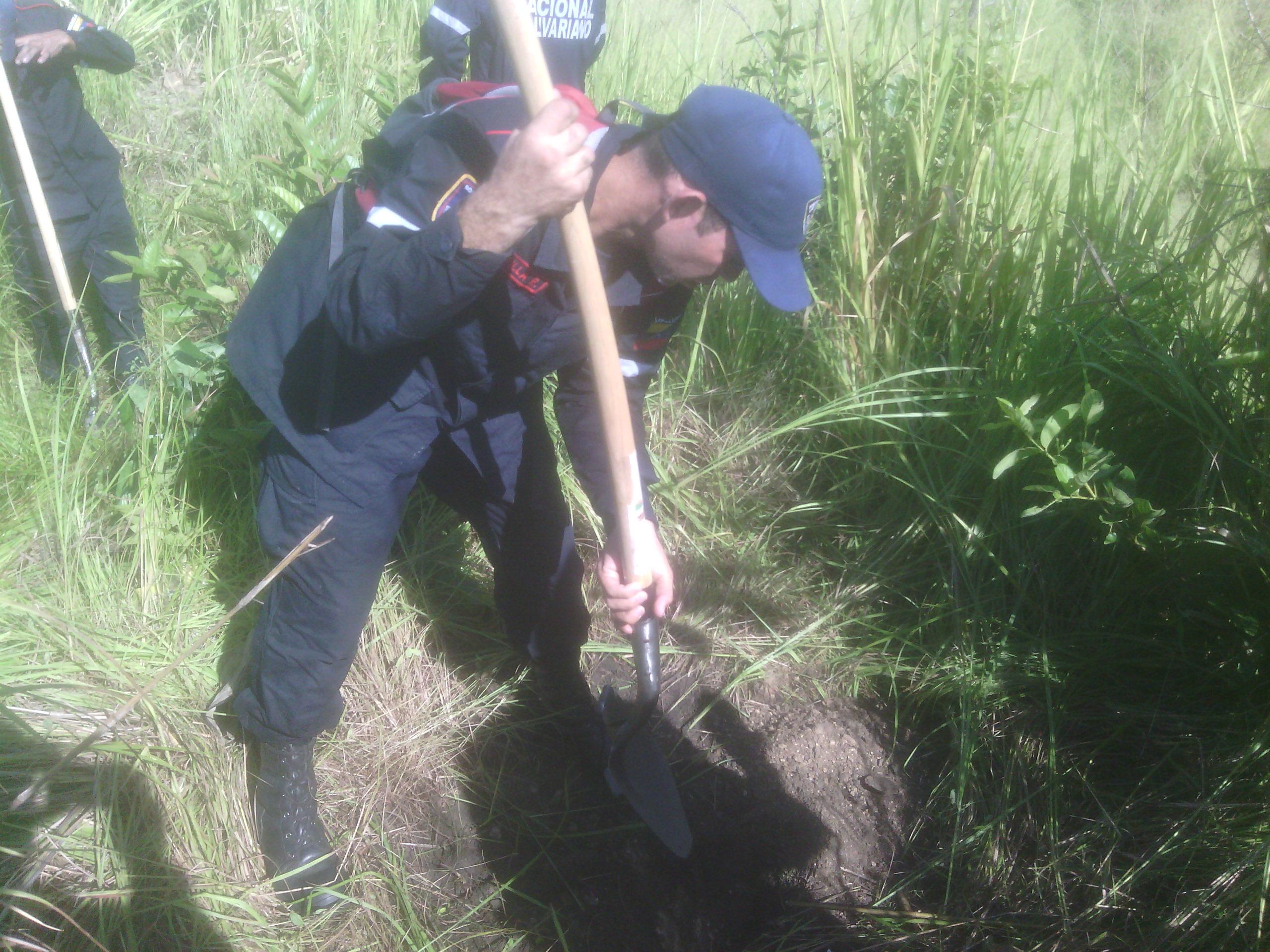 Bomberos Forestales sembraron «Un Árbol por la Amazonia» en Yaracuy